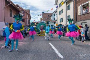 Legoren Fasnacht 2019 Oberägeri - ÄgeRio Samba